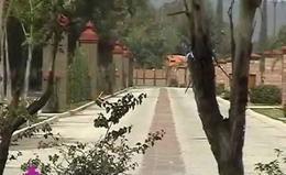 Foto Terreno en Venta en  Hacienda Obrajuelo,  Apaseo el Grande  TERRENO EN VENTA EN FRACC. RESIDENCIAL LOS CANTAROS GTO. MEX.