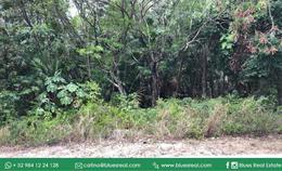 Thumbnail picture Land in Sale in  Playa del Carmen,  Solidaridad  FOR SALE land in the fractionation El Tigrillo (in front of Playacar) and near Centro Maya | Code 696
