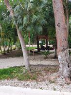 Foto Terreno en Venta en  Quintana Roo ,  Quintana Roo  Residencial Puntarena
