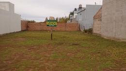 Foto Terreno en Venta en  Plottier,  Confluencia  Lilen al 1000