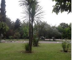 Foto Fondo de Comercio en Venta en  Maipu ,  Mendoza  Confidencial