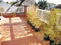 Foto Casa en Venta en  Florida-J.B.Justo,  Florida  Valle Grande al 300