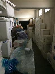 Foto Edificio Comercial en Venta | Alquiler en  Remedios De Escalada,  Lanus  29 DE SEPTIEMBRE 4050