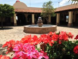 Foto Terreno en Venta en  San Andrés Tuxtla ,  Veracruz  coto tequilero