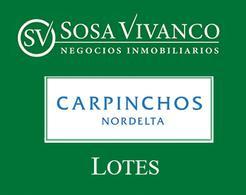 Foto Terreno en Venta en  Carpinchos,  Nordelta  Carpinchos