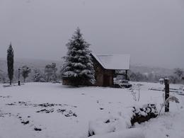 Foto Terreno en Venta en  Villa Berna,  Calamuchita  Entre Villa Berna y Los Reartes