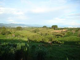 Foto Finca en Venta en  San Vito,  Coto Brus  EN SAN VITO DE COTO BRUS