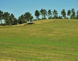 Foto Terreno en Venta en  Tafi Viejo,  Tafi Viejo  country la reserva II