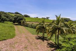 Foto Terreno en Venta en  Hojancha,  Hojancha  Lote en venta en Guanacaste!