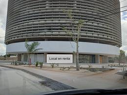 Foto Local en Renta en  Mérida ,  Yucatán  Orion Business Hub Local en renta de 58m2