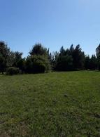 Foto Terreno en Venta en  Campos de Roca,  Coronel Brandsen  ruta 2 km 65