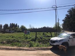 Foto Terreno en Venta en  General Belgrano,  General Belgrano  Calle 57