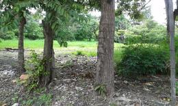 Foto Terreno en Venta en  Escazu,  Escazu          Terreno en Escazú por LA PACO. Ideal para segregar