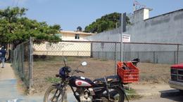 Foto Terreno en Renta en  Ciudad Altamirano Centro,  Pungarabato  TR-177 SE RENTA TERRENO EN  ZONA CENTRO DE ALTAMIRA