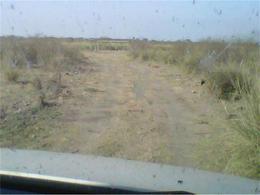Foto Campo en Venta en  Malbran,  Aguirre  Campo ganadero 1.984 has.