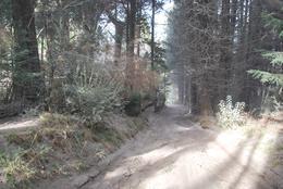 Foto Terreno en Venta en  Villa Llao Llao,  Bariloche  Av. Bustillo km 24,8