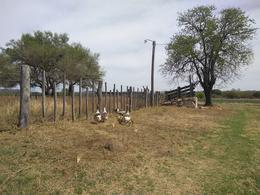 Foto Campo en Venta en  Valle de Anisacate,  Santa Maria  Campo en Anizacate -  Ideal Loteo y Producción