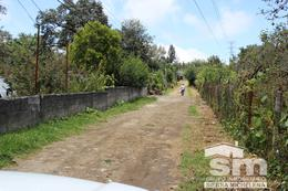 Foto Terreno en Venta en  Lomas de Ayotzingo,  Teziutlán  TERRENO EN VENTA EN TEZIUTLÁN
