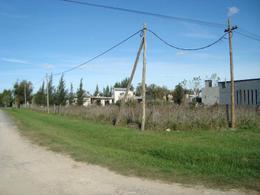 Foto Terreno en Venta en  La Plata ,  G.B.A. Zona Sur  44 esquina 302