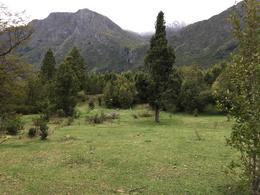 Foto Campo en Venta en  Futaleufu ,  X Región   Futaleufú