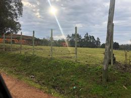 Foto Chacra en Venta en  Las cumbres ,  Maldonado  Cno. Benito Nardone próximo Lapataia
