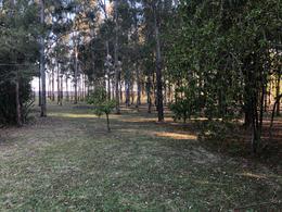 Foto Casa en Venta en  Echeverria Del Lago,  Countries/B.Cerrado (E. Echeverría)  Echeverria del Lago - Canning