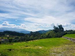 Foto Terreno en Venta en  Los Chillos,  Quito  VALLE DE LOS CHILLOS - CERCA AL COLIBRÍ, HERMOSO TERRENO DE 4.200 M2