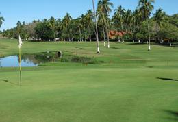 Foto Terreno en Venta en  Club de golf Ixtapa,  Zihuatanejo de Azueta  Terreno en Club de golf Ixtapa, con vista al campo, Ideal para desarrollar conjunto de casas o departamentos
