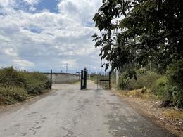 Foto Terreno en Venta en  Llano Chico,  Quito  La Hacienda Vieja - Llano Chico