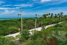 Foto Terreno en Venta en  Pueblo Sisal,  Hunucmá  Terrenos frente al mar en las playas de Sisal Yucatán