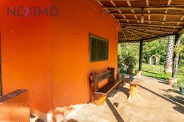 Foto Quinta en Venta | Renta en  Puerto Morelos,  Puerto Morelos  Venta Terreno o Rancho Finca Leona Vicario a minutos Cancun y Puerto M