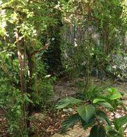 Foto Terreno en Venta en  Parque Rodó ,  Montevideo  Pablo de Maria 1042