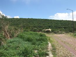 Foto Terreno en Venta en  Fraccionamiento Valle de los Reyes,  Lagos de Moreno  Valle de Los Reyes