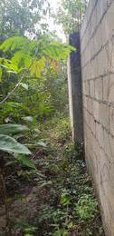 Foto Terreno en Venta en  El pedregal,  Cancún  terreno  a  2 min de Av las torres y cerca de poligono sur Cancun C2446