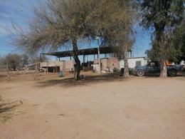 Foto Campo en Venta en  Ures ,  Sonora  VENTA DE CAMPO AGROPECUARIO EN MUNICIPIO DE URES