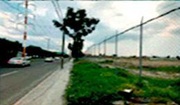 Foto Terreno en Renta en  San Pedro Totoltepec,  Toluca  Edo. Méx. San Pedro Totoltepec, 22,000m2, Industrial-Comercial