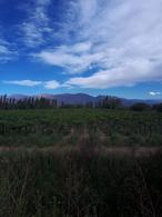 Foto Finca en Venta en  Animana,  San Carlos  Animana, San Carlos Salta