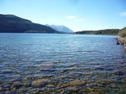 Foto Campo en Venta en  Cholila,  Cushamen  Lago Lezana, Cholila
