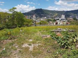 Foto Campo en Renta en  Lomas del Mayab,  Tegucigalpa  Terreno Comercial para Alquiler en Lomas del Mayab, Tegucigalpa