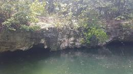 Foto Terreno en Venta en  Supermanzana 529,  Cancún  Terreno en venta con cenote ideal desarrolladores en el sur de Cancun
