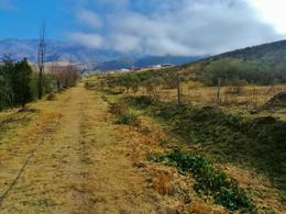 Foto Terreno en Venta en  Tafi Del Valle ,  Tucumán  VENTA LOTE LA OVEJERIA 3.225 M2- SIN EXPENSAS