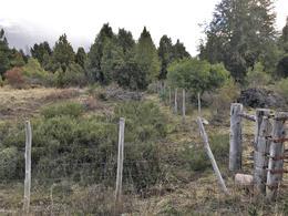 Foto thumbnail Terreno en Venta en  Los Cipreses,  Futaleufu  Ruta al 200
