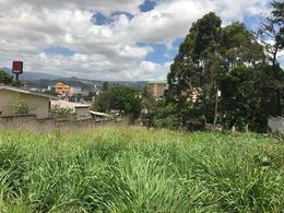 Foto Campo en Renta en  Tepeyac,  Tegucigalpa  Terreno Comercial en Renta en Tepeyac, Tegucigalpa
