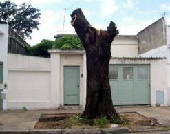 Foto Casa en Venta en  Mataderos ,  Capital Federal  San Pedro 6.800 lote de 8,66 x 26