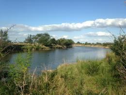 Foto Campo en Venta en  El Trigo,  Las Flores  Las Flores, a 7 km R63 y al 200