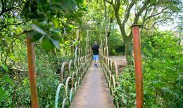 Foto Campo en Venta en  Paraguarí,  Paraguarí  Zona Rura Paraguarí-Villarrica