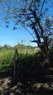 Foto Quinta en Venta en  Rancho o rancheria El Estero Norte,  Jamapa  RANCHO  DE 10 HECTAREAS UBICADO EN JAMAPA, VERACRUZ