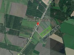 Foto Terreno en Venta en  Taruca Pampa,  Burruyacu  Taruca Pampa