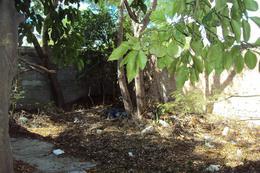 Foto Terreno en Venta en  Ciudad Reynosa Centro,  Reynosa  Ciudad Reynosa Centro