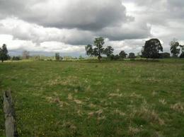Foto Campo en Venta en  Huanqueros,  San Cristobal  Campo mixto 710 has.
